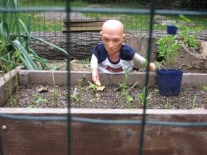 Hugo in garden